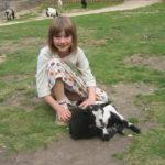 Tierpark im Schwarzwald: Mädchen im Streichelzoo mit Ziege auf dem Mundenhof in Freiburg